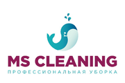 Франшиза MScleaning