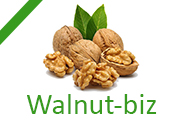 Франшиза Walnut-biz